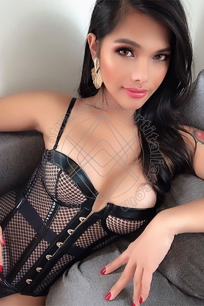 Mauy Asiatica TRENTO 3806467190