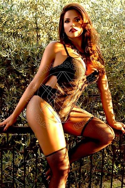Belle Bruna VICENZA 3312911901